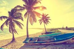 Ilha de Cozumel da praia de Chen Rio em México fotografia de stock