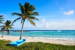 Ilha de Cozumel da praia de Chen Rio em México fotografia de stock royalty free