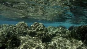 Ilha de deserto, ambiente não contaminado subaquático, maravilha da natureza filme