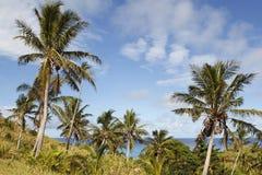 Ilha de Dravuni, Fiji foto de stock royalty free