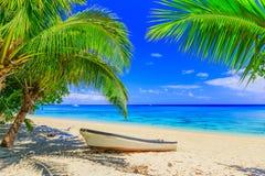 Ilha de Dravuni, Fiji fotografia de stock royalty free