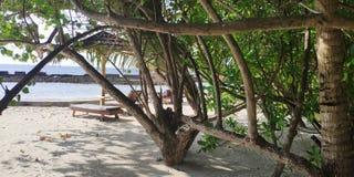 Ilha de Ellaidhoo maldives imagem de stock