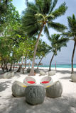 Ilha de férias em Maldivas Fotografia de Stock Royalty Free