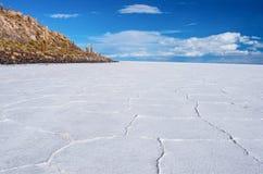 Ilha de Incahuasi em Salar de Uyuni em Bolívia Fotos de Stock Royalty Free