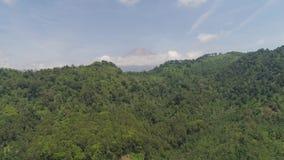 Ilha de Jawa da paisagem da montanha, Indonésia filme
