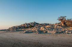 Ilha de Kubu, Botswana Foto de Stock