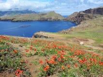 Ilha de Madeira Fotografia de Stock