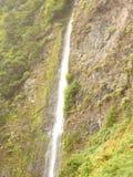 Ilha de Madeira Imagens de Stock