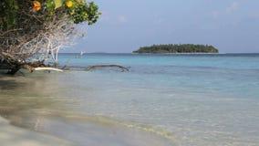 Ilha de Maldivas video estoque
