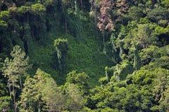 Ilha de Maurícias imagem de stock
