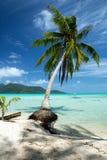 Ilha de Motu em Tahiti Fotografia de Stock Royalty Free