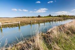 Ilha de Newtown Harbour National Nature Reserve do Wight Inglaterra Fotos de Stock Royalty Free
