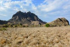 Ilha de Padar da opinião dos savanas Fotografia de Stock Royalty Free