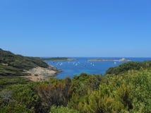 Ilha de Porquerolles, Hyeres, França Fotos de Stock Royalty Free