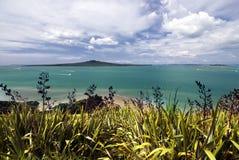Ilha de Rangitoto, porto de Waitemata, cidade de Auckland, Nova Zelândia Fotos de Stock