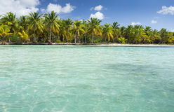 Ilha de Saona Fotos de Stock