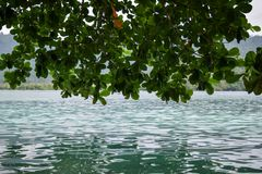 ILHA DE SEBESI, BANDAR LAMPUNG, INDONÉSIA 3 DE JULHO DE 2018: vistas nas rochas e nas árvores da costa na ilha de Sebesi, Indonés Fotografia de Stock Royalty Free