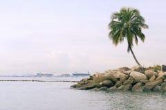 Ilha de Sentosa imagens de stock royalty free