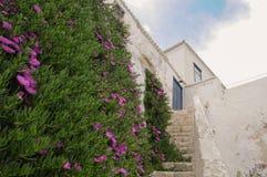 Ilha de Spetses, Grécia Fotografia de Stock