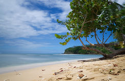 Ilha de Tobago - Mt Baía de Irvine - praia tropical do mar das caraíbas Fotografia de Stock