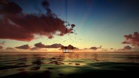 Ilha de Trpical isolada pela água, gaivotas que voam, nascer do sol do timelapse ilustração do vetor
