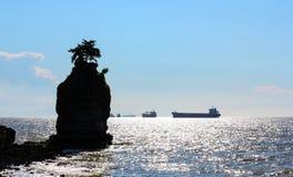 Ilha do abacaxi Imagens de Stock Royalty Free