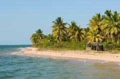 Ilha do Campinho royalty-vrije stock foto's