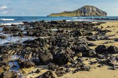 Ilha do coelho Fotografia de Stock