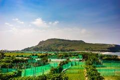 Ilha do filho da LY, Quang Ngai, Vietname Imagem de Stock