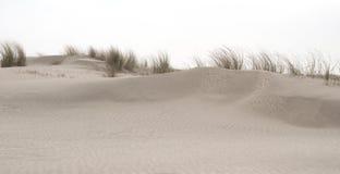 Ilha do Frisian de Spiekeroog Alemanha da reserva natural Imagem de Stock Royalty Free