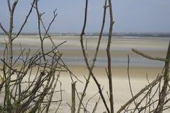 Ilha do Frisian de Spiekeroog Alemanha da reserva natural Foto de Stock Royalty Free