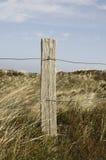Ilha do Frisian de Spiekeroog Alemanha da reserva natural Imagens de Stock