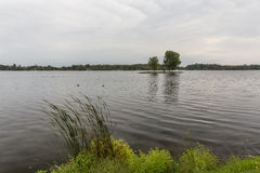 Ilha do lago rice Imagem de Stock Royalty Free