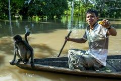 Ilha do macaco perto de Iquitos no Peru Fotografia de Stock Royalty Free