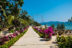Ilha do macaco vietnam Imagem de Stock