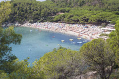 Ilha do mar da Ilha de Elba Foto de Stock