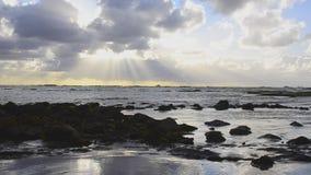 Ilha do Mocha, o paraíso do couro cru vídeos de arquivo