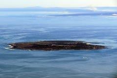 Ilha do pisco de peito vermelho Fotografia de Stock Royalty Free