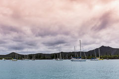 Ilha do porto dos pinhos Fotos de Stock Royalty Free