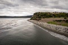 Ilha dos pinguins no canal do lebreiro, Ushuaia, Argentina imagem de stock