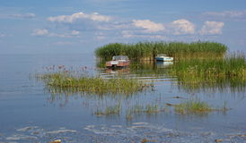 Ilha e barcos de Reed, lago Peipus (Chudskoe), Estônia imagem de stock royalty free