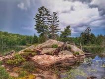 Ilha e pinheiros da rocha na região selvagem canadense imagem de stock