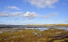Ilha escocesa Saltmarsh imagem de stock royalty free