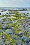 Ilha grande Havaí da paisagem do retrato fotos de stock
