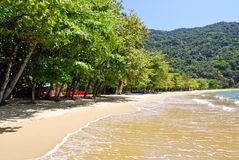 Ilha Grande: Plażowy Praia Lopes mendes, Rio De Janeiro stan, Brazylia Obrazy Royalty Free