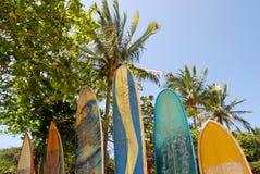 Ilha Grande: Surfboards przy plażowym Praia Lopes Mendes, Rio De Janeiro stan, Brazylia obraz stock