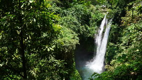Ilha Indonésia de bali da cachoeira Imagens de Stock
