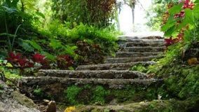 Ilha Indonésia de bali das escadas Imagem de Stock Royalty Free