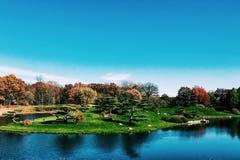 Ilha japonesa do jardim nos jardins botânicos em Chicago Foto de Stock