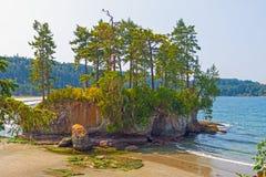 Ilha litoral verdejante na maré baixa foto de stock